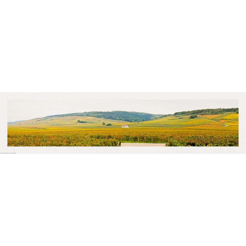 Bourgogne, vue des Grands Crus depuis le Clos de Vougeot